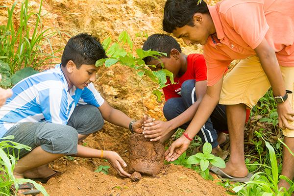 sivananda-teens-camp-activities